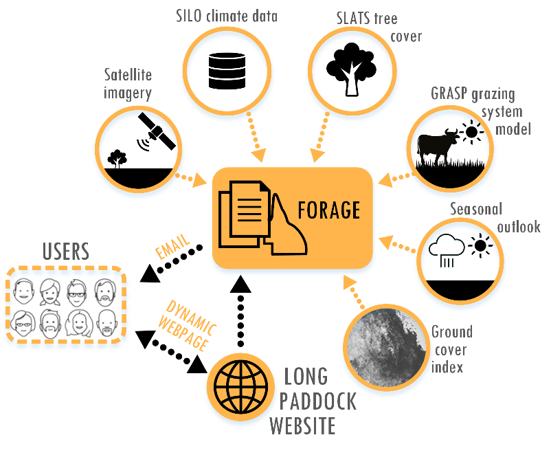 how forage works
