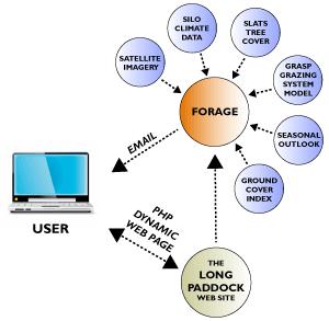 how forage works